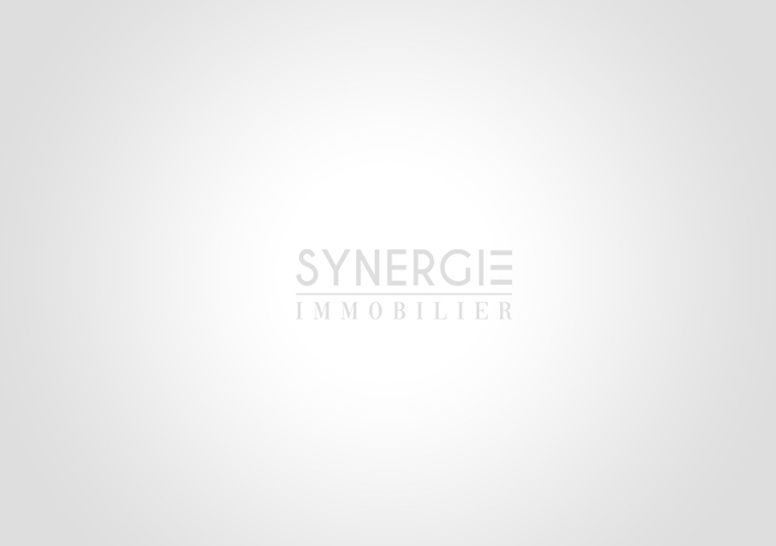 Titre d'agent immobilier Synergie immobilier